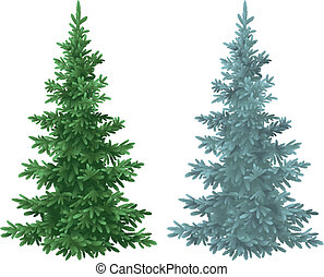 Christmas green and blue spruce fir trees - Green and blue ...
