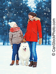 Christmas happy family, mother and son child walking with white Samoyed dog on snow in winter day, flying snowflakes