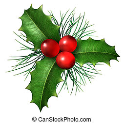 Christmas holly with with red berries and green leaves with evergreen pine needles isolated on a white background as a winter holiday symbol and seasonal decoration.