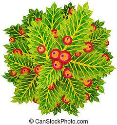 Holly circle wreath