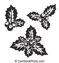 Christmas holly or European holly silhouette