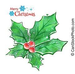 Christmas holly.
