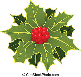 christmas holly with berry