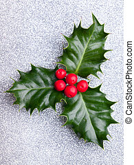 Christmas holly with red berries on silver holyday background