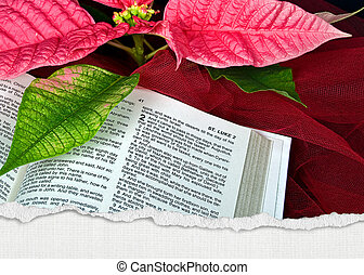 Christmas Holy Bible - Holy Bible with torn edge border and...