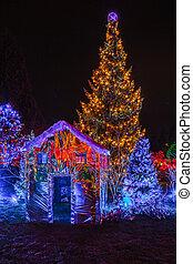 Christmas illumination  in the Garden