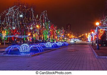 Christmas lighting at the park area on the night of the baptism in January 2014.