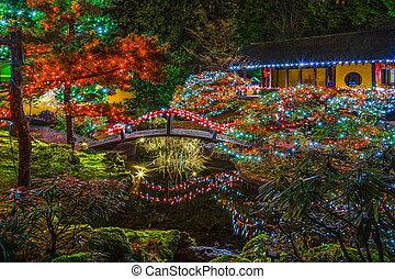 Christmas illuminations in the Garden