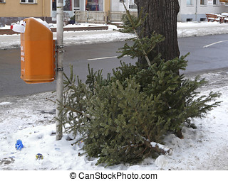Christmas trees are put down at a street after the feast -...