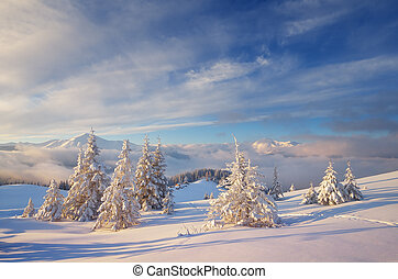 Christmas landscape in the mountains