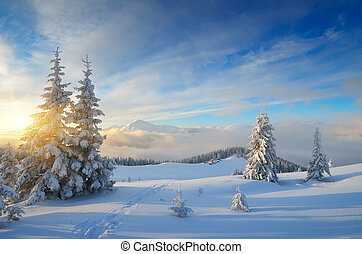 Christmas landscape - Winter in the mountains. Christmas...