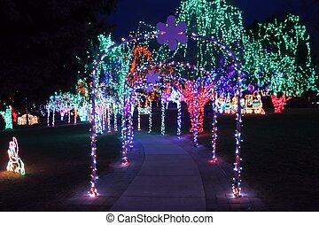 Christmas Light Walkway