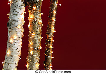 Christmas lights on birch branches - Red background with ...