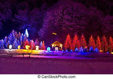 Christmas lights on chapel and trees - Christmas lights on...