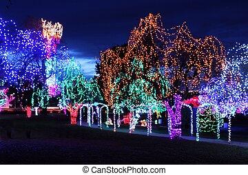 Christmas Lights on Tree's