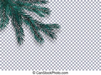 Christmas, New Year. Realistic blue tree branch and its shadow. Against the background of the checkered. illustration