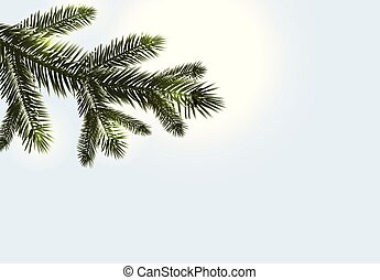 Christmas, New Year. Realistic branches of fir or pine close...