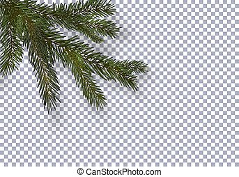 Christmas, New Year. Realistic green tree branch and its shadow. Against the background of the checkered. illustration