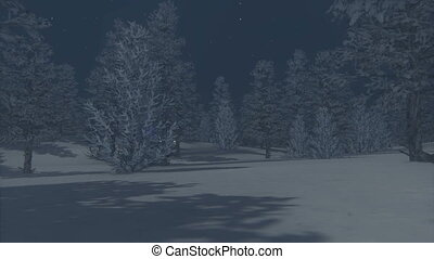 Christmas night - Camera moves through the night forest to...