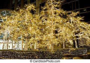 beautiful christmas decoration trees night scenes