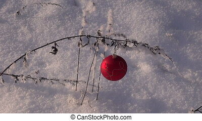 Christmas ornament on grass stalk outdoors in snow covered...