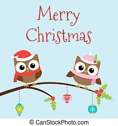 Christmas owls on branch