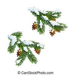 Christmas pine and fir branches in snow - Christmas fir and...