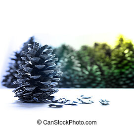 christmas pine cone fruits background