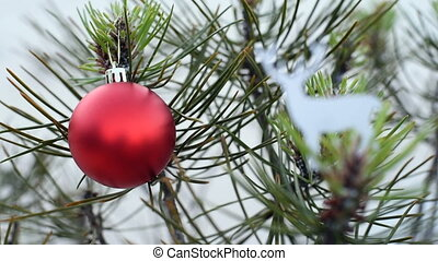 Christmas pine tree and holiday ornament in winter loop clip