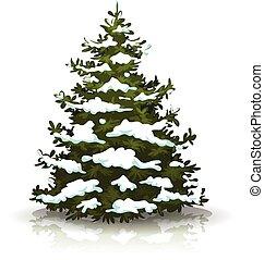 Christmas Pine Tree With Snow