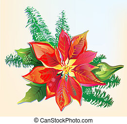 Christmas card with poinsettia and fir branch. The vector is hand drawn, uses a gradient meshes and is in AI-EPS8 format.