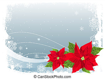 Christmas poinsettia - Christmas decoration poinsettia...