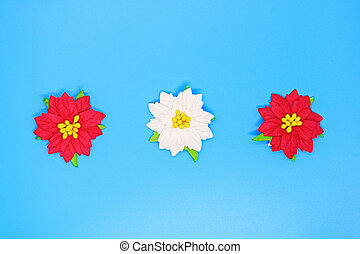 Christmas poinsettia flowers close-up on a blue background, Christmas backgrounds, Christmas composition, a place for tex