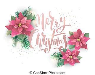 Christmas poinsettia vector design card