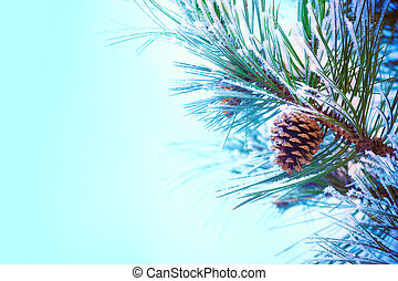 A snow-covered pine cone on a frosty pine branch. Much space for copy.