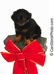 Christmas Puppy on Pedastle