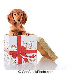 Christmas puppy present