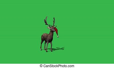 christmas rendeer animation - green screen effect