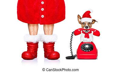 christmas santa claus dog on the phone