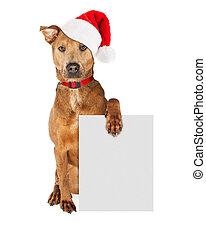 Christmas Santa Dog With Blank Sign