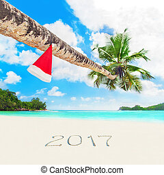 Christmas Santa hat on palm at tropical beach season 2017