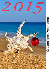 Christmas seashell on the sandy beach