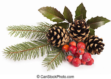 Christmas seasonal border of holly, mistletoe, sprigs with pine cones over white background