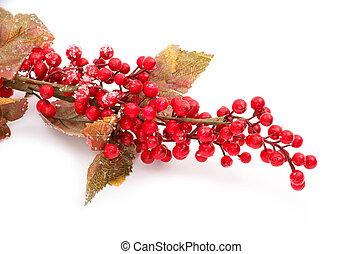 Christmas seasonal border