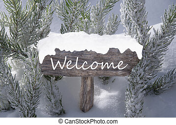 Christmas Sign Snow Fir Tree Branch Text Welcome