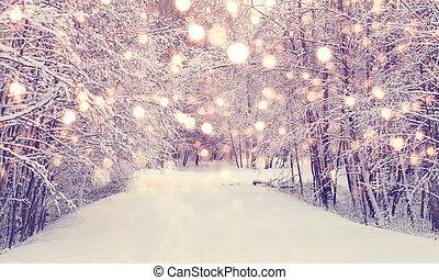 Christmas snowfall in park