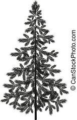 Christmas spruce fir tree silhouette - Christmas spruce fir...