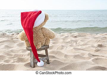Christmas Teddy Bear On Beach