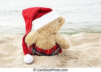 Christmas teddy bear sitting on beach