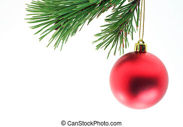 A christmas ball hanging off of a pine branch.